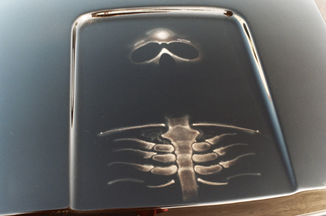 Skull on your hood
